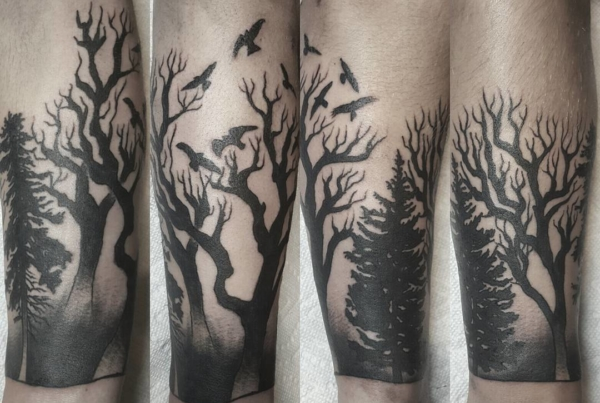 Ye old tree and bird trick. Thanks Tristian!