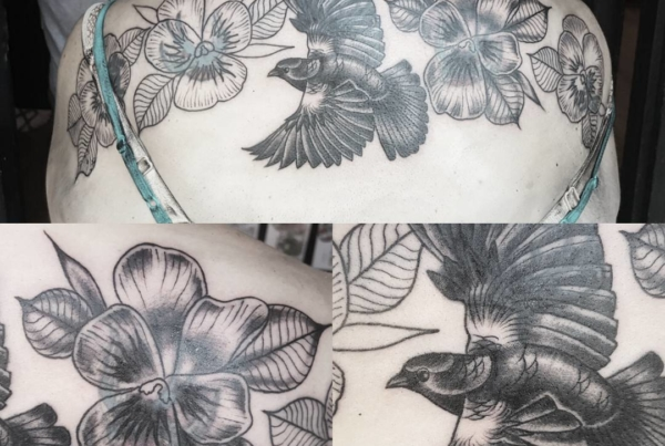 A good start to Kiley's back peice/cover up. It was nice catching up with you after 10 years or so! Looking forward to finishing this.