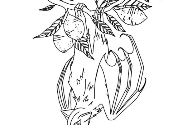 fruit bat hanging from a lemon tree branch 🌿 looking to tattoo this in the future! #foxtailtattoo #battattoo #blackworkers #blackwork #blackworktattoos #occult #ladytattooers #rochestertattoo #fruitbat #floralandfauna