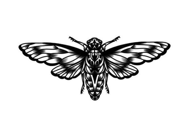 cicada for @mattisonelliot 🌿 #blackwork #blackworktattoos #blackworkers #inkstinct #tttism #workhorseirons #cicadatattoo #tattoodesign #occult #ladytattooers #waverlyink #steadfast #rochesterny